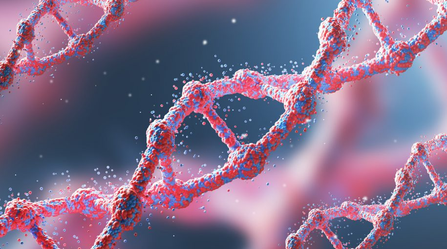 ARK Investment Adds Genomics, Innovation ETFs