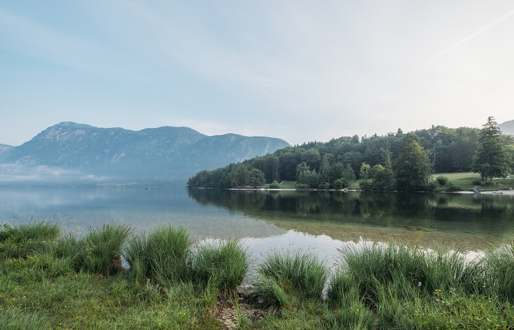 RMI and the Liquid Alternatives Landscape