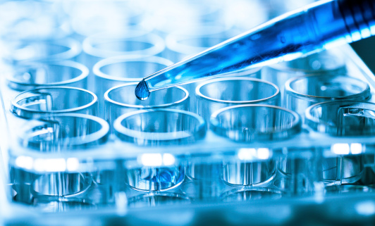 Some Traders Bet on Q2 Rebounds for Biotech ETFs