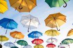 ETF TMI Strategy Shares Debuts Two ETFs