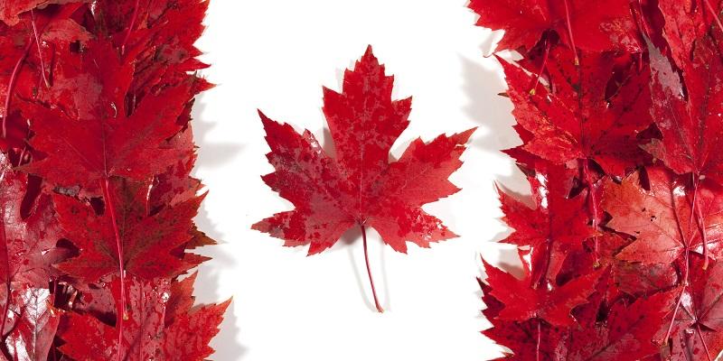 Canadian ETF/ETP Assets Hit Record $US79.42 Billion High