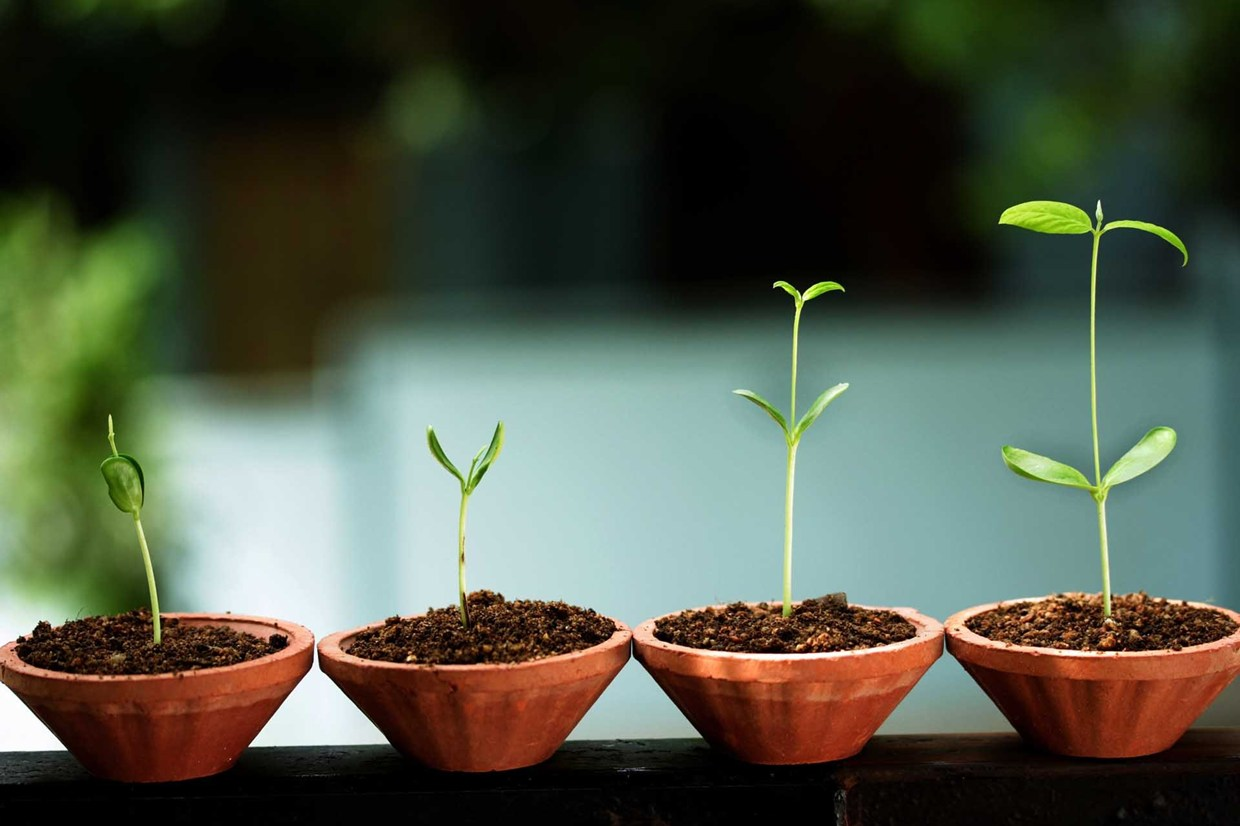 Is It Finally Time for Growth ETFs to Shine?