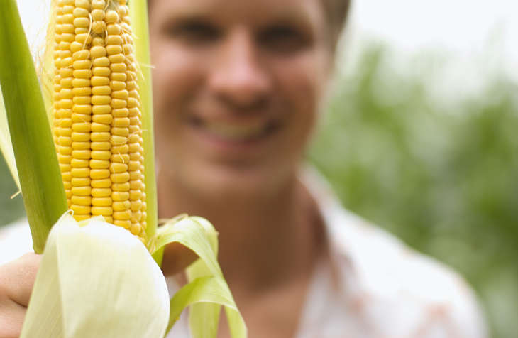 Not So Corny: This Agriculture ETF is Moving Higher