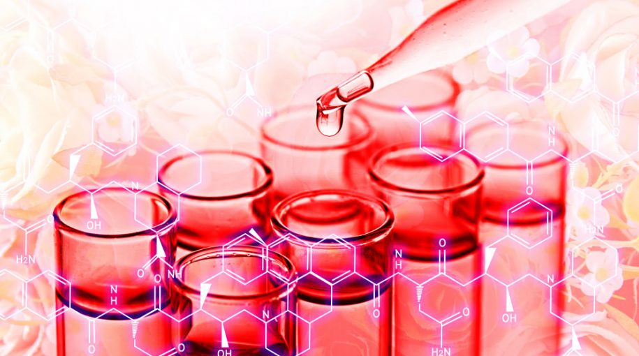 Evaluating the Biotech ETF Rally