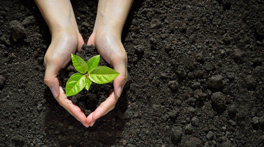 Invest with a Conscience: ESG in Bond Portfolios