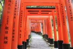 Japan, Canada ETFETP Assets Reach Record $235B, $107B