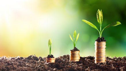 Nervous Investor? Consider These 3 Dividend ETFs