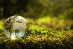 Deutsche Bank Subsidiary Launches ESG Money Market Fund