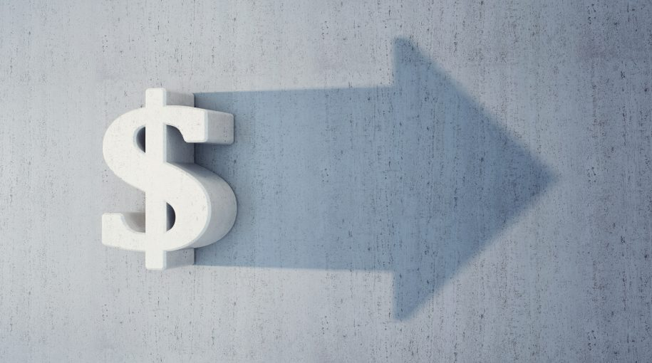What is Owner Earnings and Cash Profits?