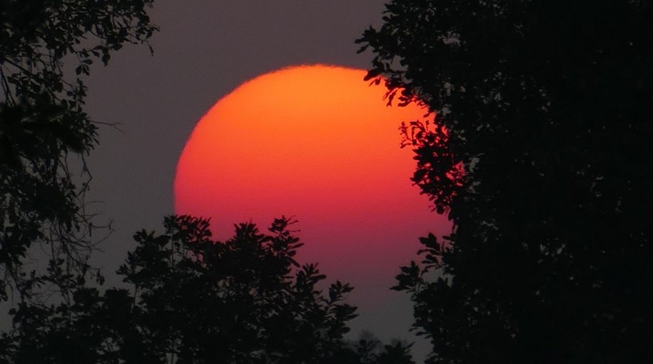 ETF Strategy for Rising Interest Rates
