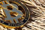 Bitcoin Gains an Important Endorsement
