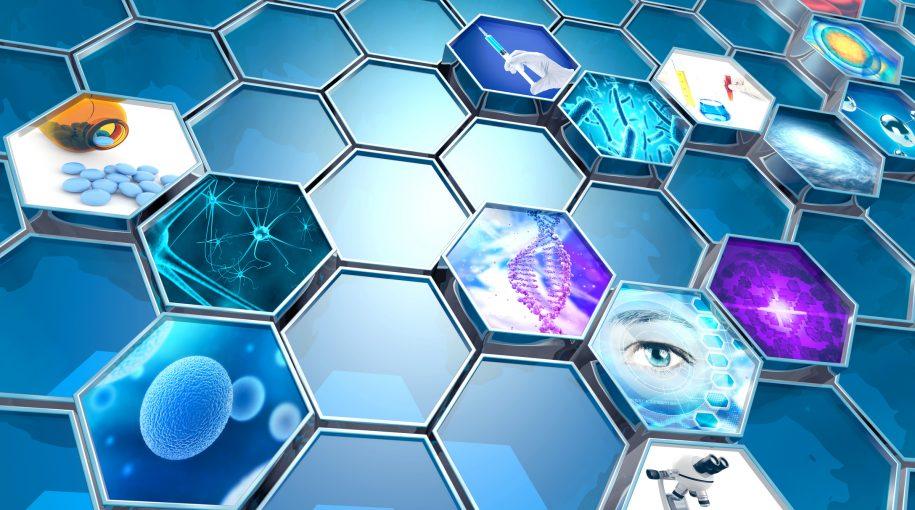 Catalysts Abound for Biotech ETFs