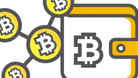 The Bitcoin Wallet App & Crypto Overview