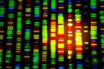 ARK Genomics ETF Jumps 30.5% YTD