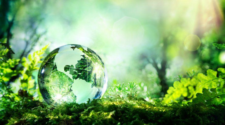 Incorporating ESG Investments into an ETF Portfolio