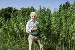 Marijuana ETF Climbs as Tilray Becomes First Canadian Company to Import Pot to U.S.