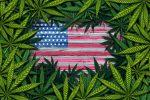 Marijuana ETF Will Undergo Custodial Changes