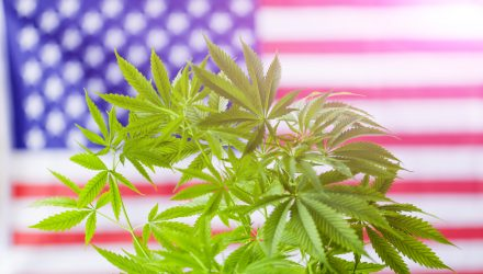 Marijuana ETF as a U.S. Midterm Election Play