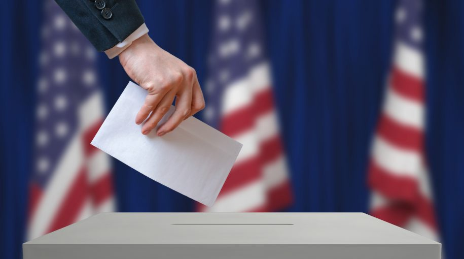 Navigating Mid-Term Elections: Smooth Sailing or Choppy Waters Ahead?