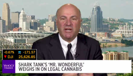 Why Kevin O'Leary Won't Be Investing in Cannabis