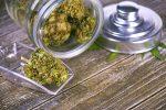 Marijuana ETF Jumps After Canopy Growth Buys U.S. Hemp Researcher