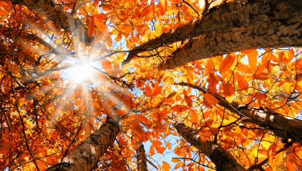 October's Volatility a Reminder that Seasonal Strategy is Worth Considering
